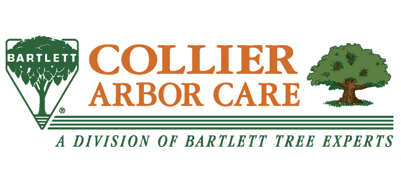 Collier Bartlett combined logo - final-01