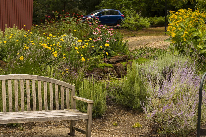 Lewis and Clark Pollinator Garden